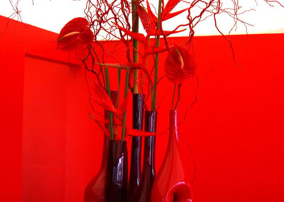 Collection of all red vases and flowers