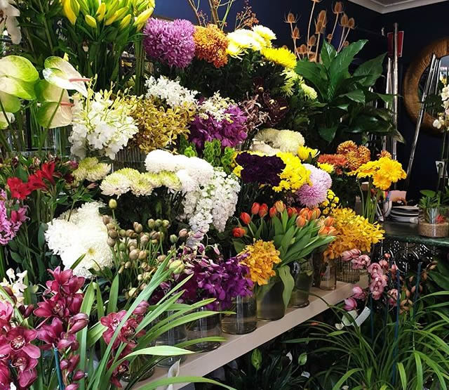 Large Range Instore at Florian Florist