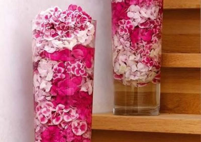 Pink and white hydrangea heads in tall vases